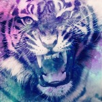 Bad_Ass_Tiger