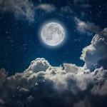 Bella_Moon