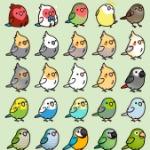 birdgirl360(loves birds)