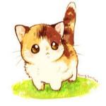 oreo_the_cat