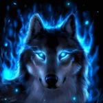 Cody Wolf