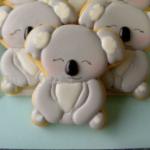 CookieKoala