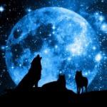 Darquesse MoonShadow