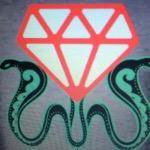 DiamondRaider01
