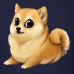 Doge lover
