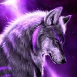 Elie_galaxywolf_demonwolf