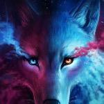 Galaxy (Wolf)