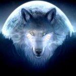 Galaxy Wolf [SINGLE]