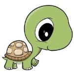 I like turtels