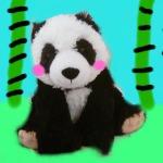 Kitty(panda)