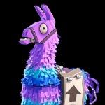 Llama brother