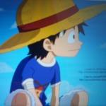 Luffy(idiot.....)