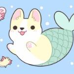 Mermaid Corgi