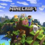 Minecraft Pro Gaming