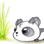 Oreo the panda