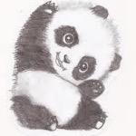Panda[P.G.L](visiting)
