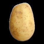 potato451