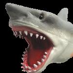 SharkPuppet
