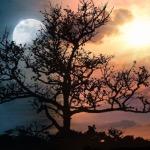 Sun moon and stars