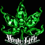 THE HIGHEST LIFE WEED