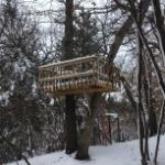 Treehouse wrecker